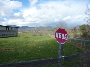Stop sign that says Whoa with beautiful mountains in the background