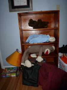 book shelf with one doll laying on each shelf